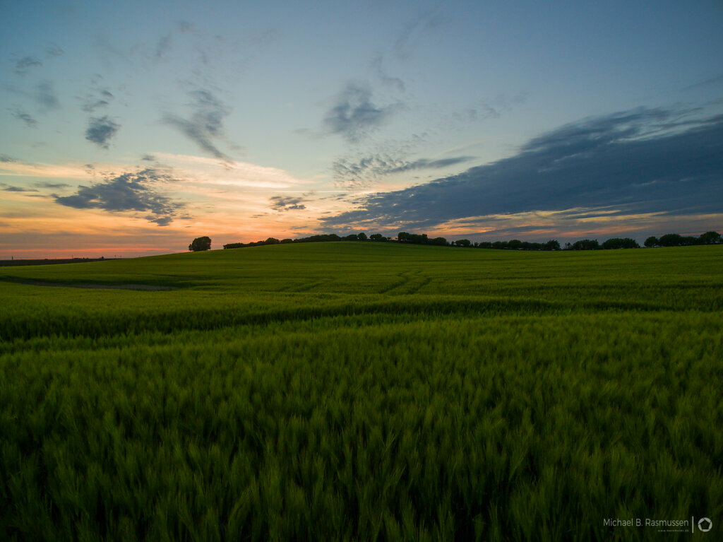 Sunset over farmfields