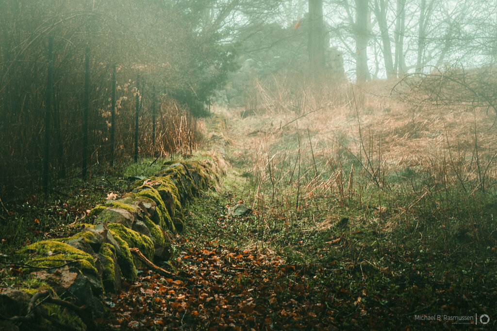 Stone wall in the mist